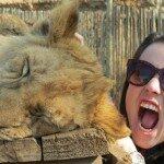 Diário de viagem: Lions Park – Johanesburgo