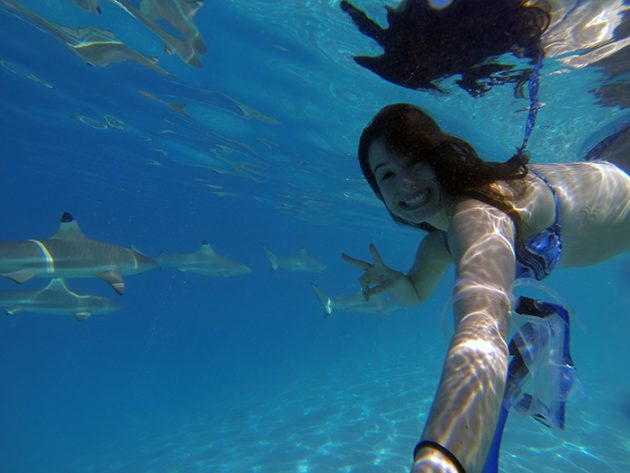nado com tubarões bora bora