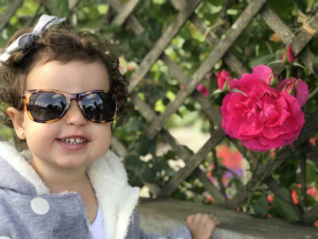 Vic e a rosa no jardim de Villandry